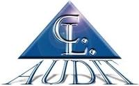 thumb_cl-audit